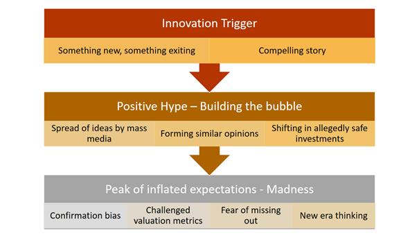 Describing the steps in the hype cycle