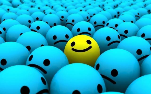 Optimism Herding Contrarianism