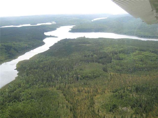 Rio Tinto Busy Drilling At Forum Energy Metals' Janice Lake Copper Project In C$30M JV