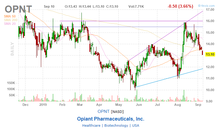 Opiant Pharmaceuticals: A Hidden Gem With Upcoming Catalyst