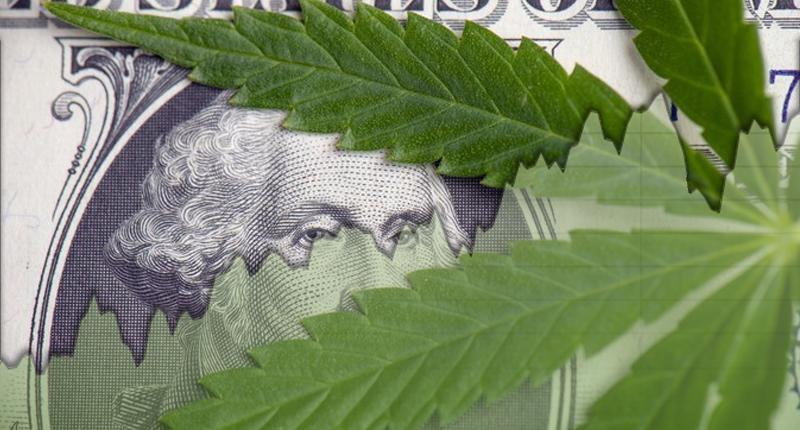 What Does The Future Of Marijuana Stocks Look Like?