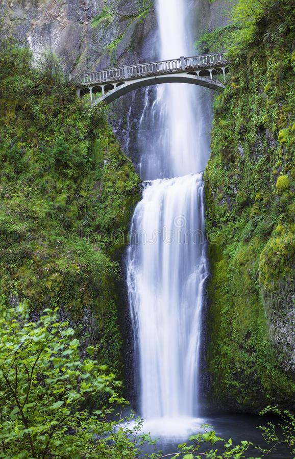 Northwest Pacific Waterfalls Within Oregon State Royalty ...