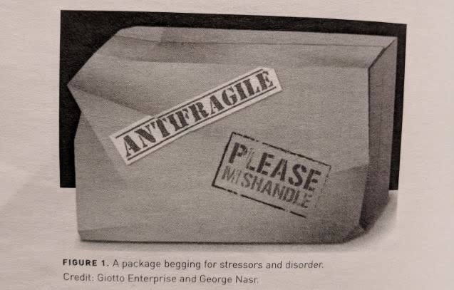 Please Mishandle Antifragile Package