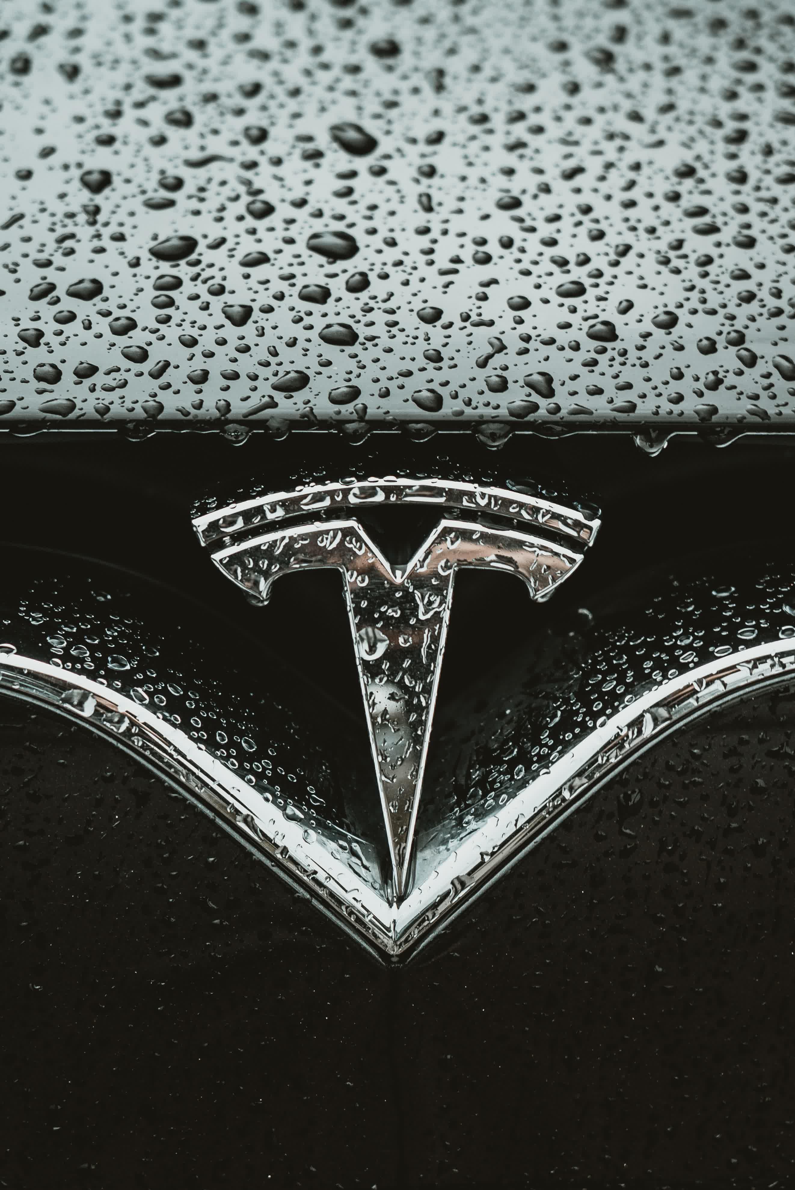 Think Of Tesla Stock As The Hermes Birkin Handbag For Today's Equity Market - Tesla, Inc. (NASDAQ:TSLA) | Seeking Alpha