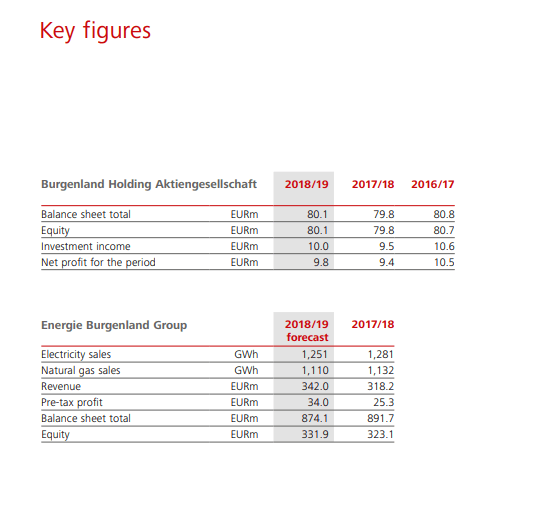 Burgenland stock financials – Source: Annual report 2019