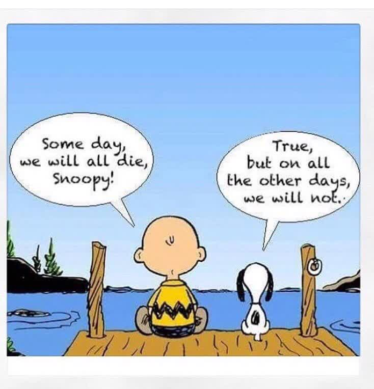 """Stephanie Crouppen en Twitter: """"""""Someday, we will all die, snoopy!"""" """"True, but on all the other days, we will not."""" - Charlie Brown… """""""
