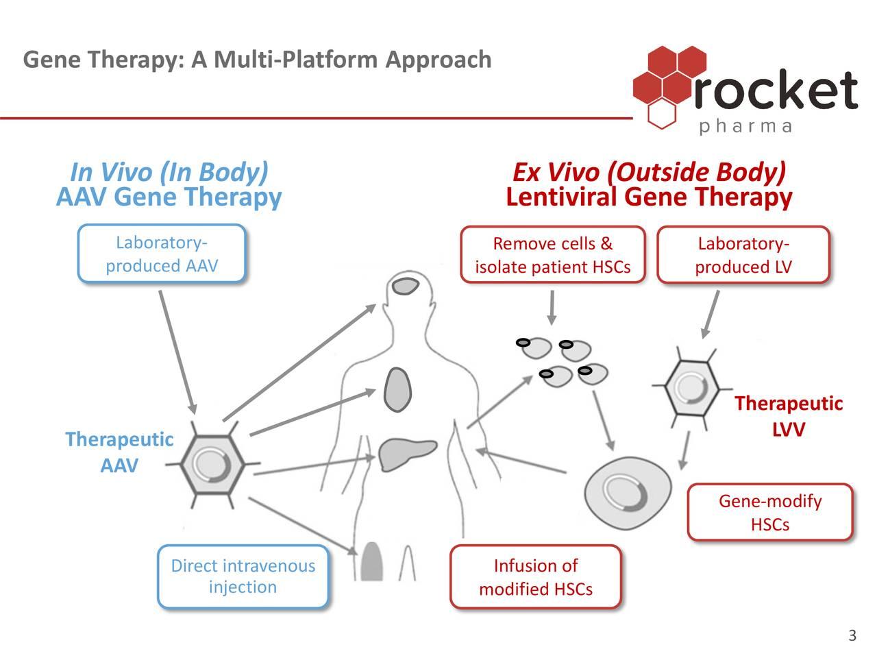 Gene Therapy: A Multi-Platform Approach