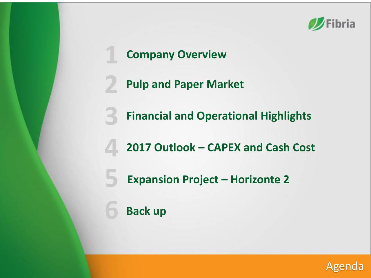Pulp and Paper Market 2 3 Financial and Operational Highlights 4 2017 Outlook  CAPEX and Cash Cost 5 Expansion Project  Horizonte 2 6 Back up