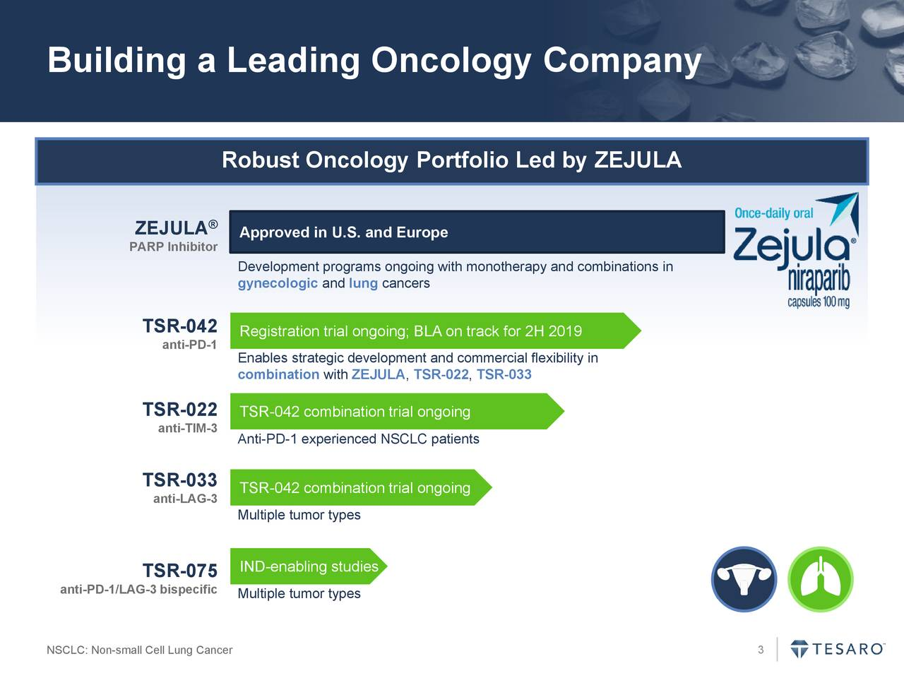 Robust Oncology Portfolio Led by ZEJULA ZEJULA ® Approved in U.S. and Europe PARP Inhibitor Development programs ongoing with monotherapy and combinations in gynecologic and lung cancers TSR-042 Registration trial ongoing; BLA on track for 2H 2019 anti-PD-1 Enables strategic development and commercial flexibility in combination with ZEJULA, TSR-022, TSR-033 TSR-022 TSR-042 combination trial ongoing anti-TIM-3 Anti-PD-1 experienced NSCLC patients TSR-033 TSR-042 combination trial ongoing anti-LAG-3 Multiple tumor types TSR-075 IND-enabling studies anti-PD-1/LAG-3 bispeciMultiple tumor types NSCLC: Non-small Cell Lung Cancer 3